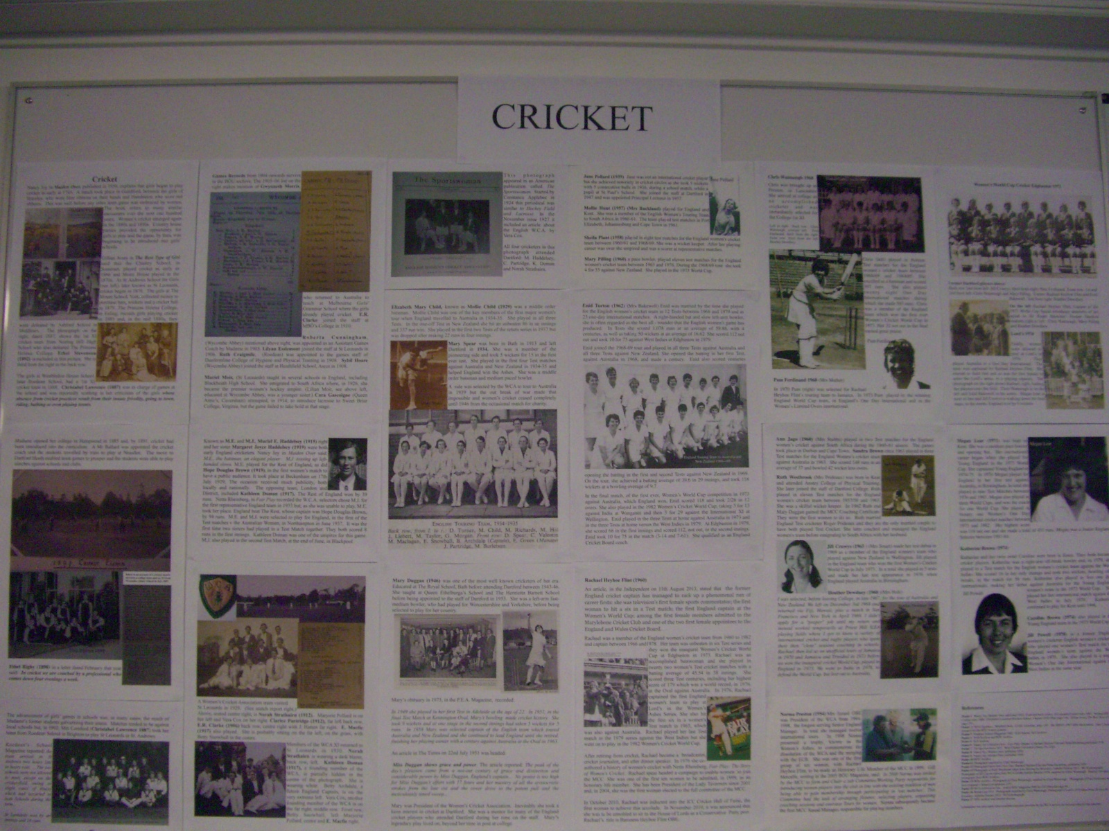 Cricket CIMG1849